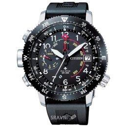 Наручные часы Citizen BN4044-15E