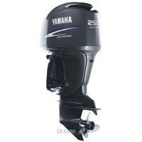 Yamaha FL250DETX