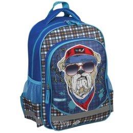 Школьный рюкзак, сумку Пифагор Бульдог (226884)